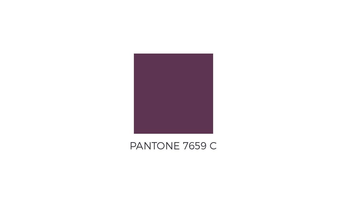 v8pe-pantone-color